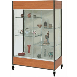 Mobile Trophy and Art Display Case