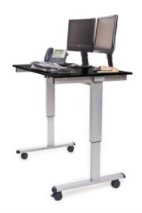 48 Inch Electric Standing Desk