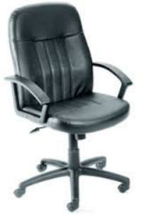 Executive Swivel Chair (TER-051101)